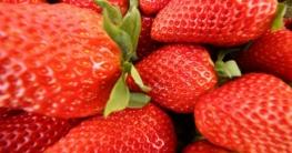 erdbeeren in huelva